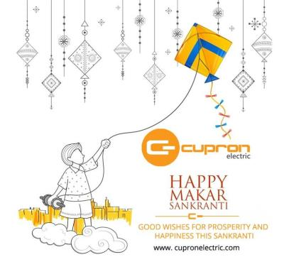 Happy Makar Sankrant...!!!